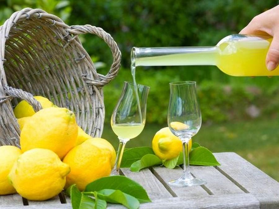 лимончелло дома