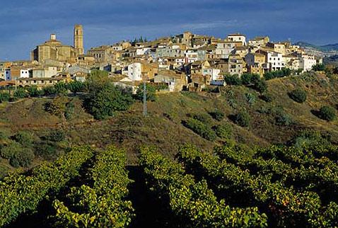 вина испании путеводитель