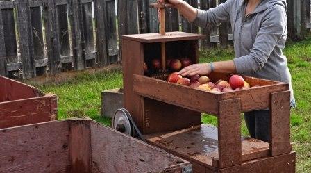 Как сделать вино из яблок 909