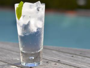 джин напиток как пить