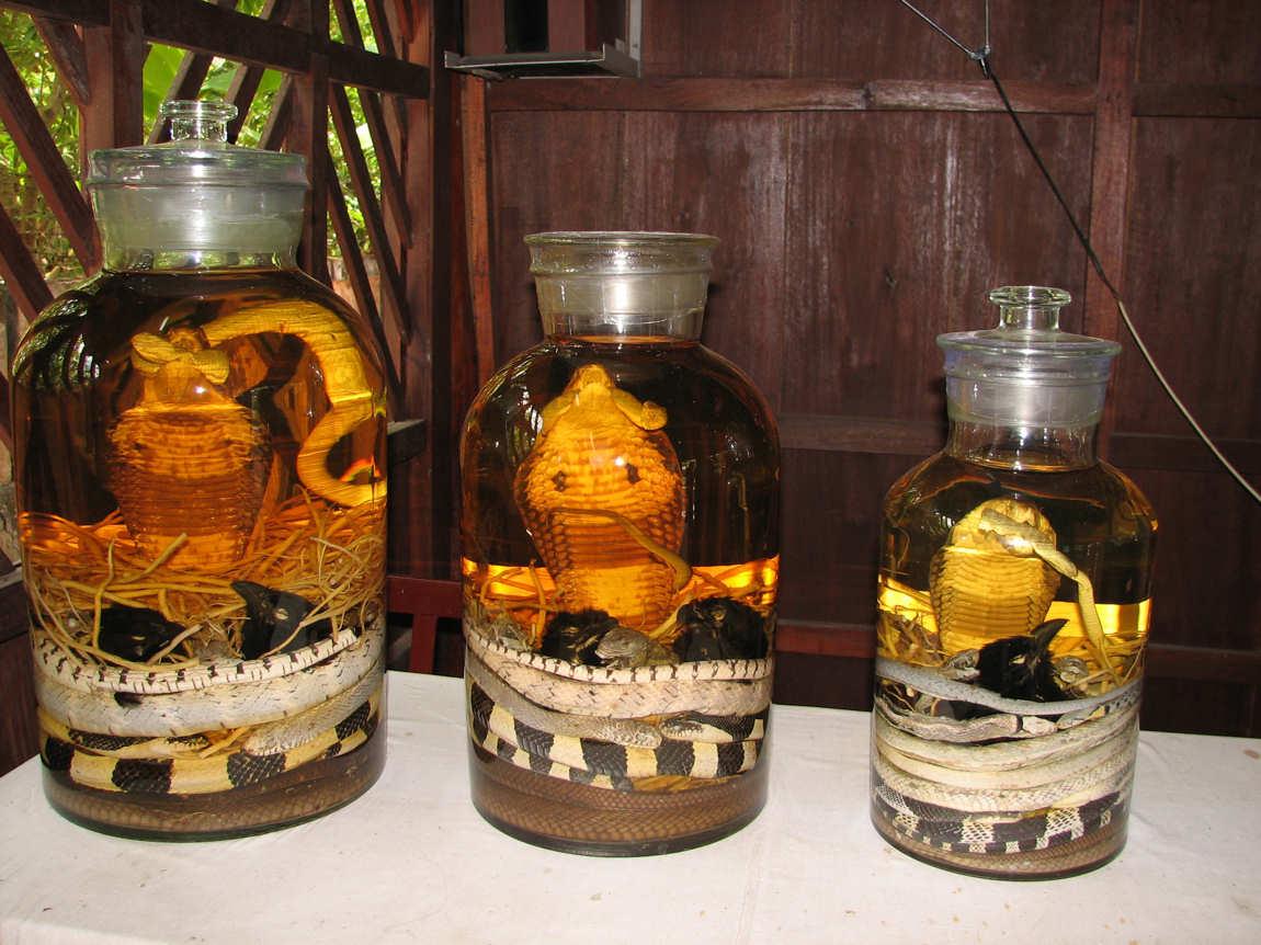 Вьетнамская настойка со змеей