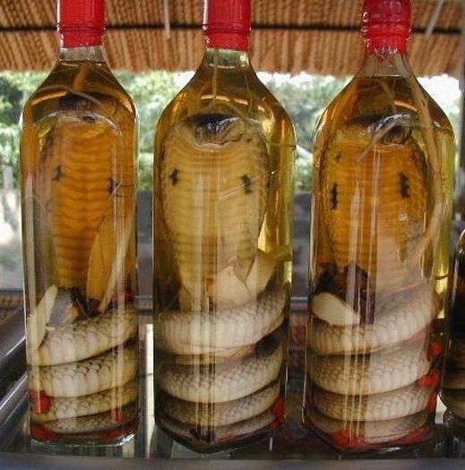 китайская водка со змеей